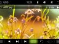 USB-Video